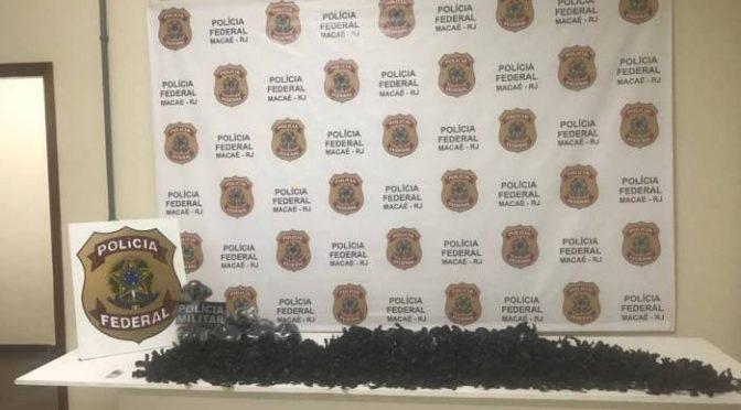 POLICIA APREENDE CERCA DE 7 MIL PAPELOTES DE COCAINA EM MACAÉ
